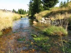 Safírový potok, Osada Jizerka, Jizerské hory, Chata Jasan v Kořenově